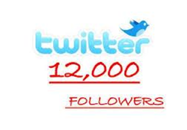 I will get you 12000+ twitter followers