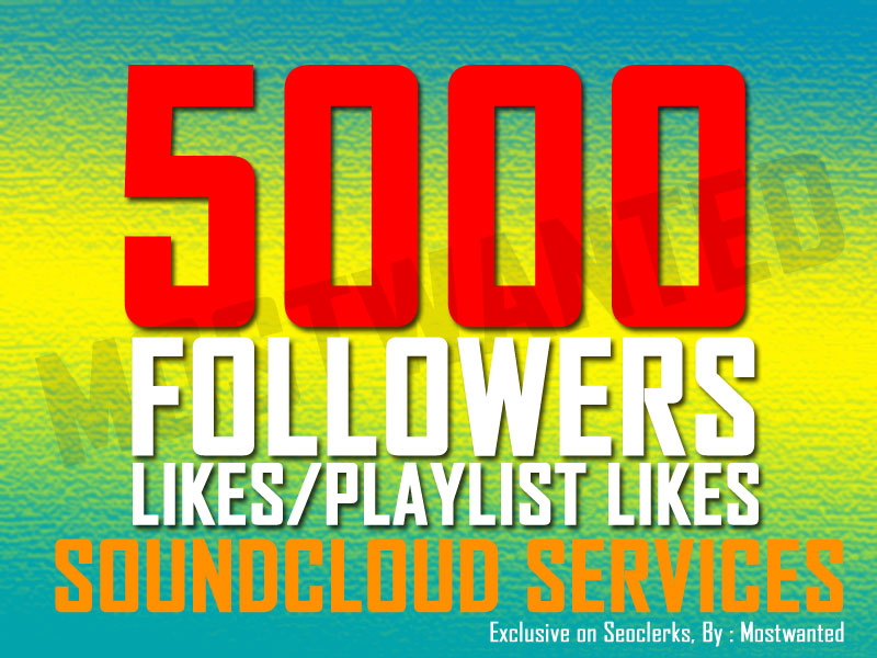 5000 LIKES OR FOLLOWERS  SPLIT UPTO 20 TRACKS