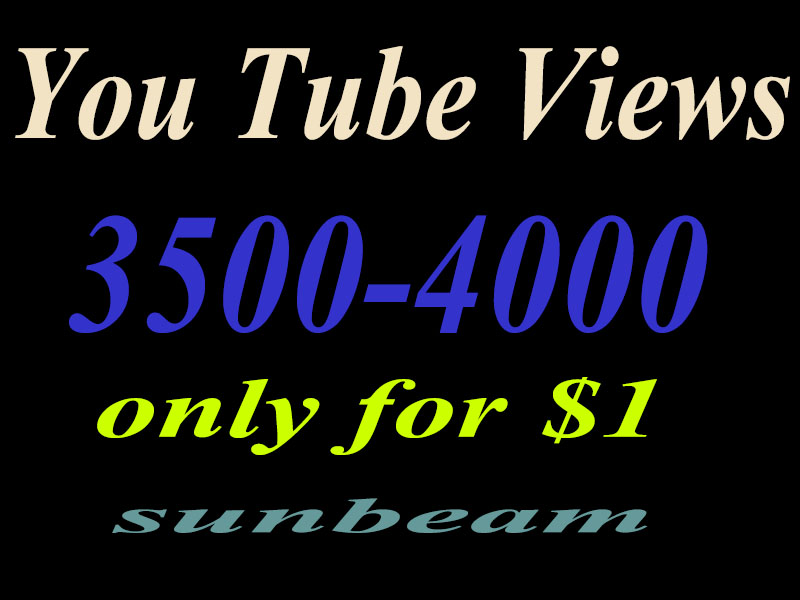 Add you 3500-4000  High Quality Human you tube views just