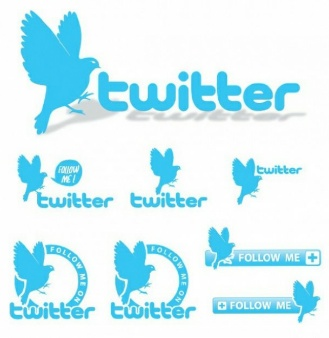 provide you 1000 USA Twitter Folowers Instant