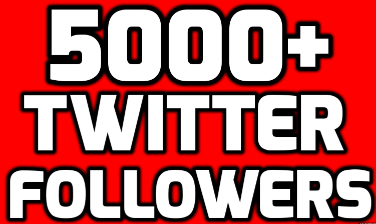 Provide Instant 5000+ Permanent Twitter Followers Within 24 Hours