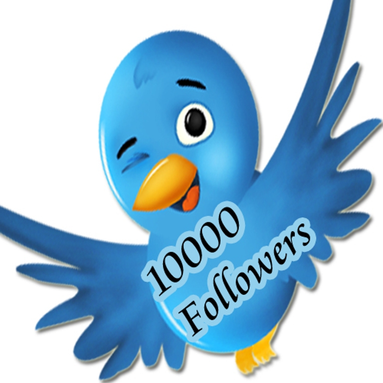 Give you High Quality 1,000++ Twiitter followers