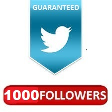 Provide you verified 1,000+ twitter followers for $1