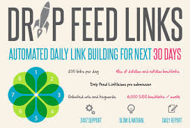 Drip feed 200 + backlinks per day for 30 days