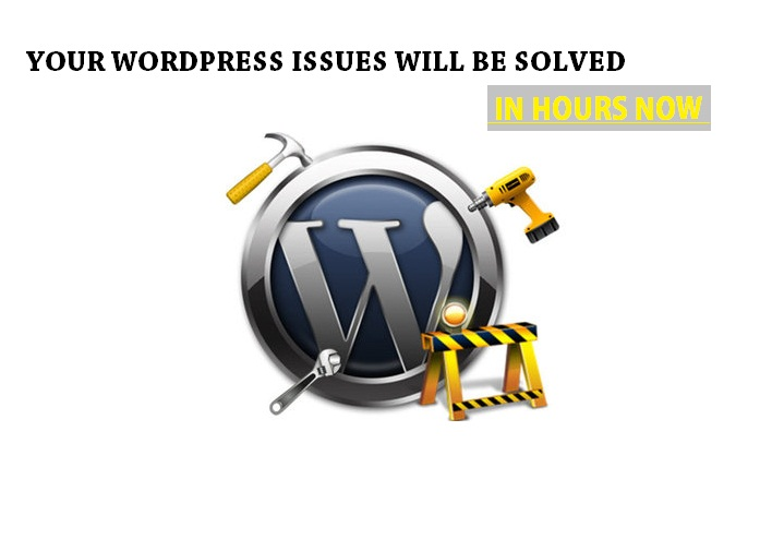 i ll design and develop any website in word press