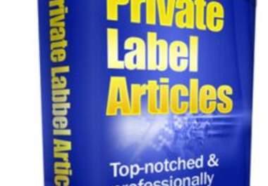 offer you a huge 140,000+ PLR articles pack