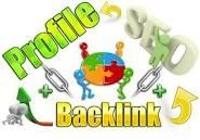 Create backlinks from 15 PR9 high authority sites + 15 high PR Web2 Blogs