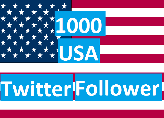 i provide you 1000 USA Twitter Follows OR Re-tweet OR Favorites