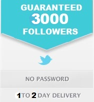 give you verified 1000+ real twitter followers not fake for $1