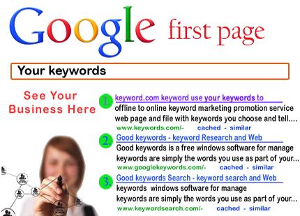 I will rank you 1st in Google SEO guaranteed