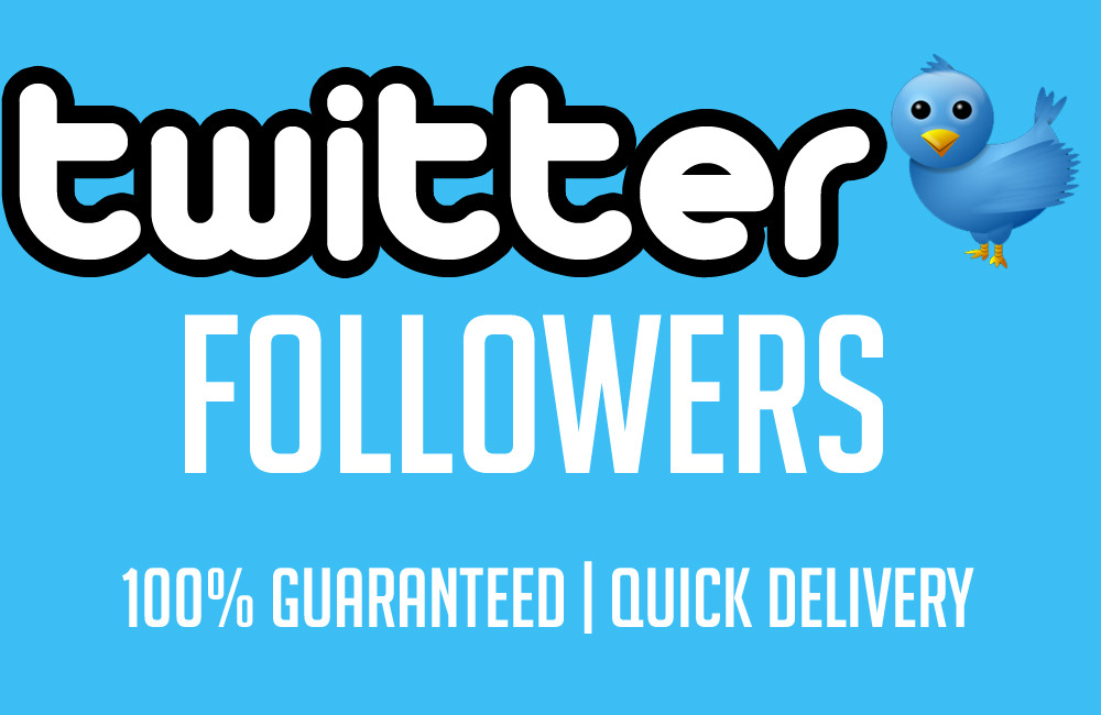 Give You Real & Permanent 500+ High Quality Twitter Followers, only