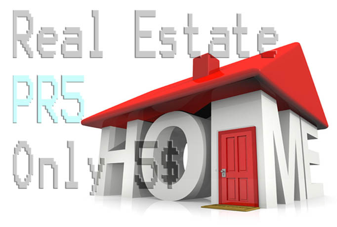 I will give You permanent Link Real Estate Pr5 and pr4