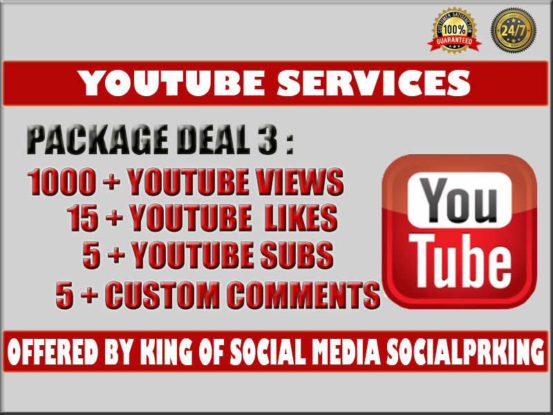 I will give you 1000 - 1300+ YT Video vie ws+ 15 yt lik es, 5 subs and 5 custom comments