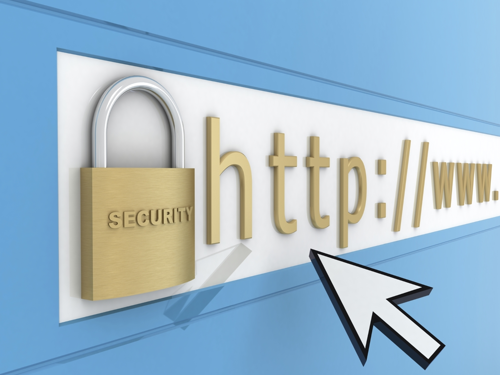 I will keep your website safe.