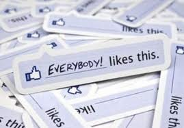 give you 1000 real human FACEBOOK likes in 24hours