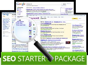 Get Excellent SEO Starter Package For Your Website