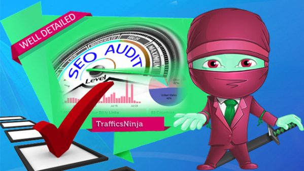 Deliver-3000-Real-Human-Targeted-Traffic-from-USA-to-your-Website-or-Blog