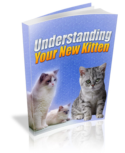 Understanding Your New Kitten PLR eBook