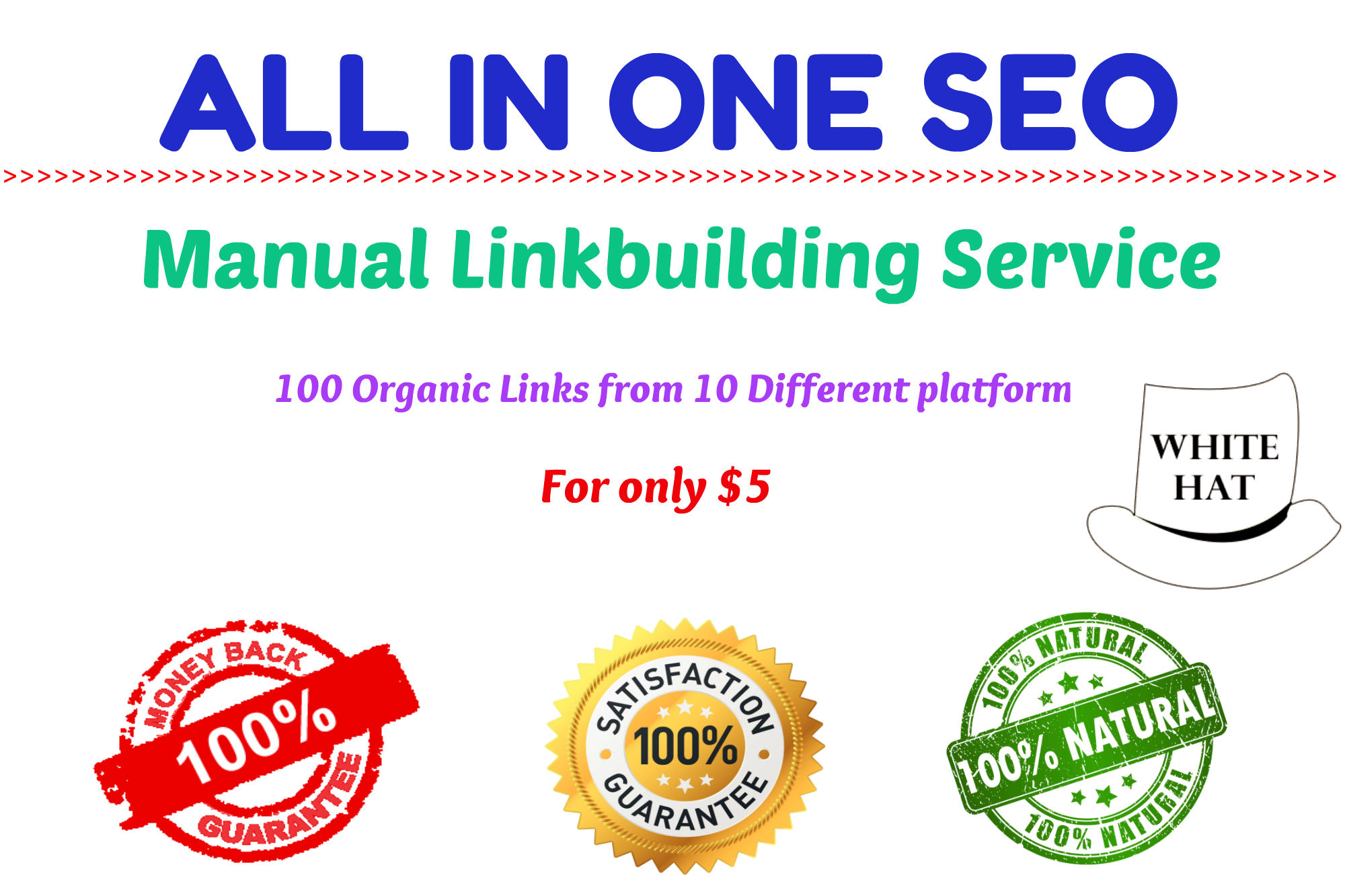 All In One Manual SEO Link Building Package