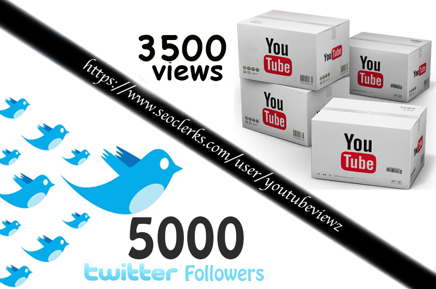 3500+ High Retention Youtube Views for $1