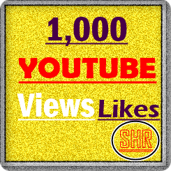1,000+ High Retention Youtube views +100 Likes