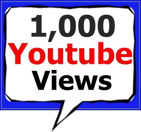 1,000+ High Retention Youtube views +100 Likes