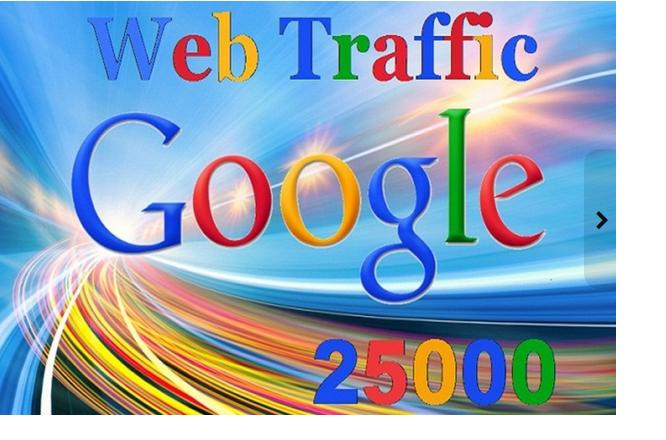 25000 Web Traffic from Google