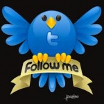 Get 10000+ real & guaranteed Twitter Followers only