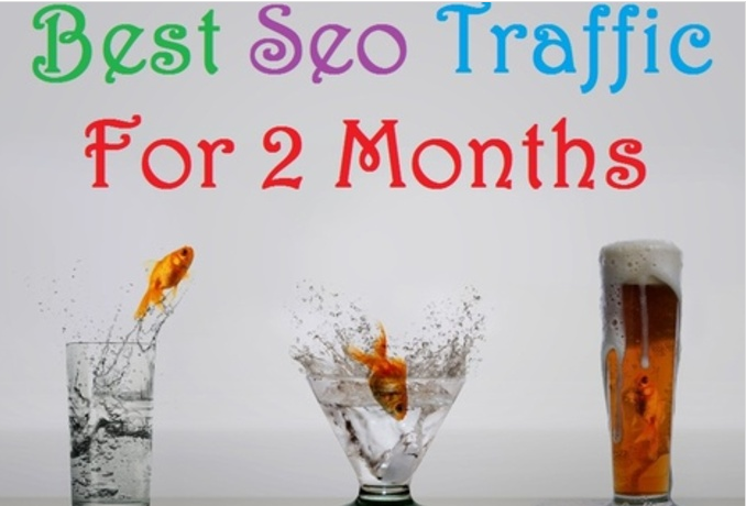 deliver 2 months of Guaranteed Search Traffic