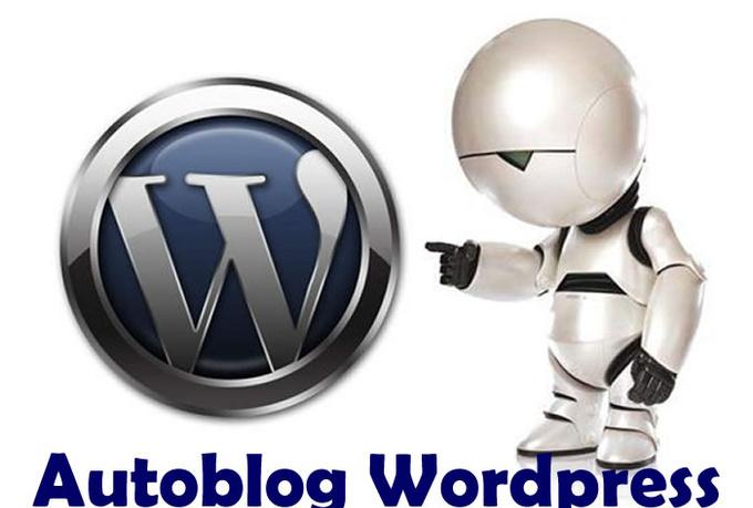 I will make A Good SEOed Autoblog Workpress In Any Niche