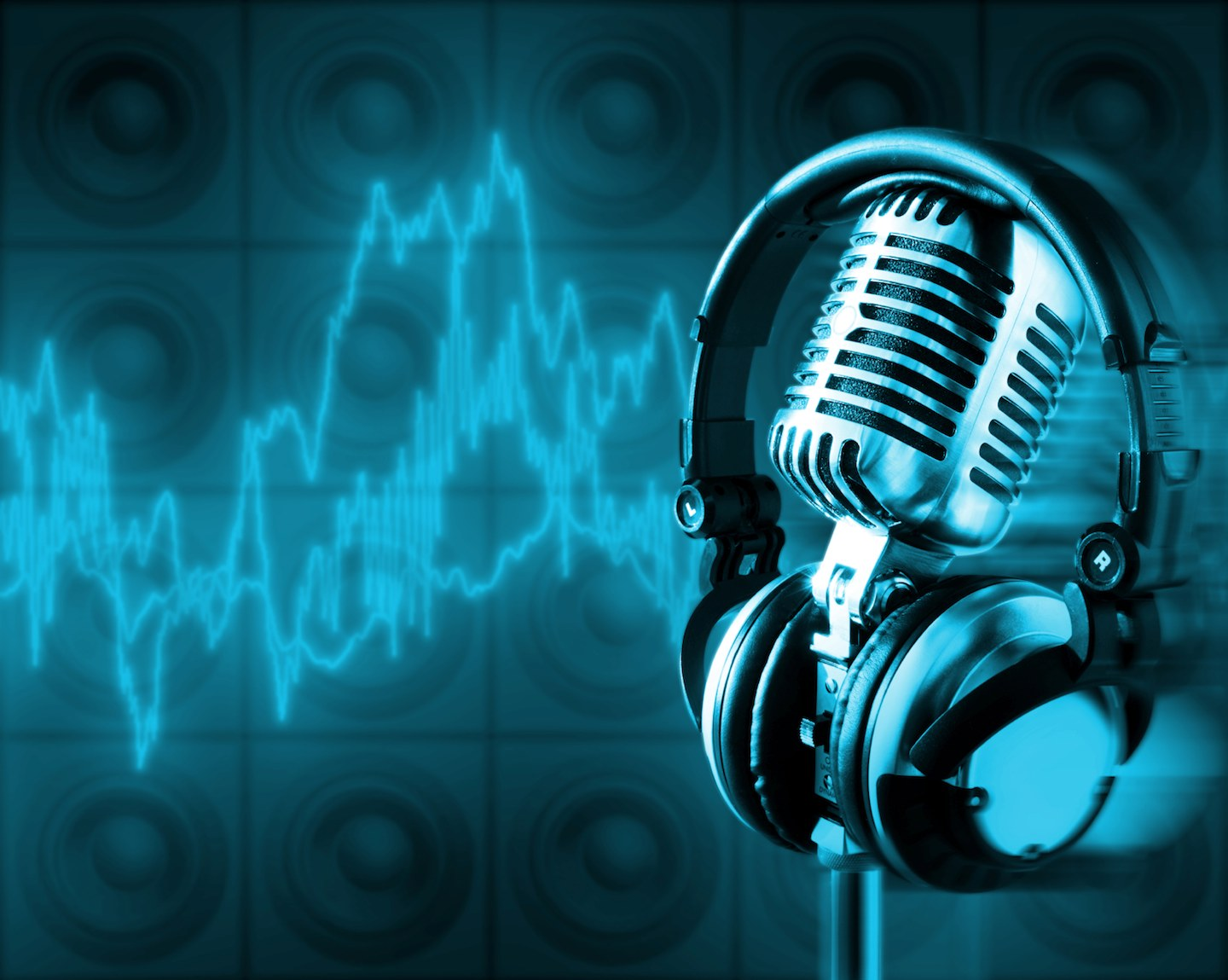 Voice Over for Your Project