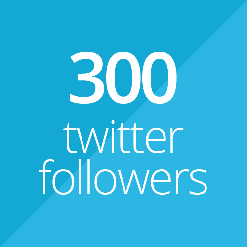 300 Twitter followers for $1