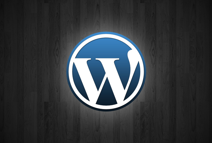 I will install and customize Wordpress script