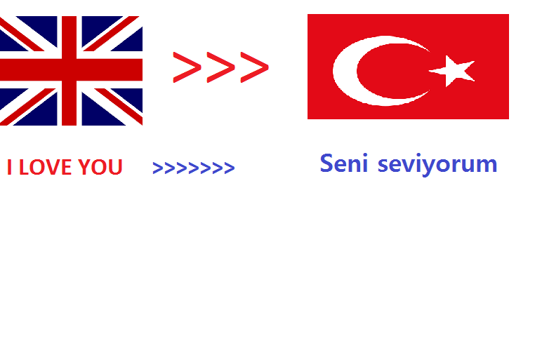 We will translate 500 English words to Turkish within 24hrs