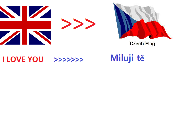 We will translate 500 English words to Czech within 24hrs