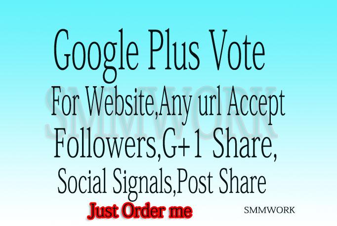 Provide U 300+ USA base Google Plus Circle Follow Only