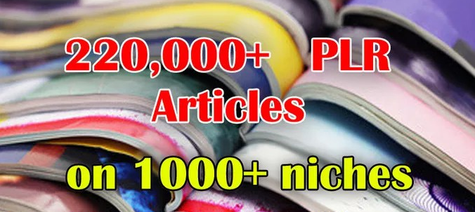 I will give 220,000 PLR Articles on 1000 niches