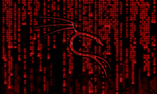 Teach DoS-ing on Kali Linux and SQL Injection