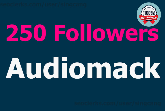 I will add 250 Followers to your Audiomack TODAY