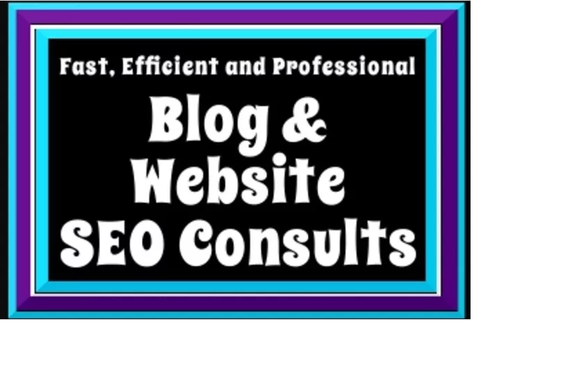 I will provide a mini SEO consultation for your blog or website