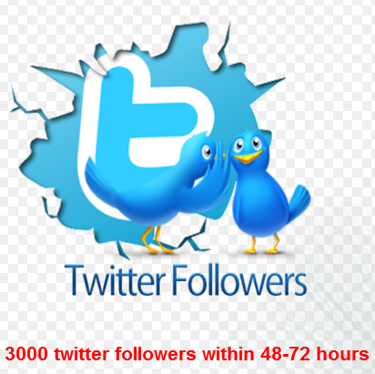 buy 1000  High Quality real looking twitter F-ollowers within 48-72 hours only for