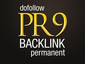 SERPs Booster-30 backlinks from 22 PR9 + 11 PR8 domains best result-2015
