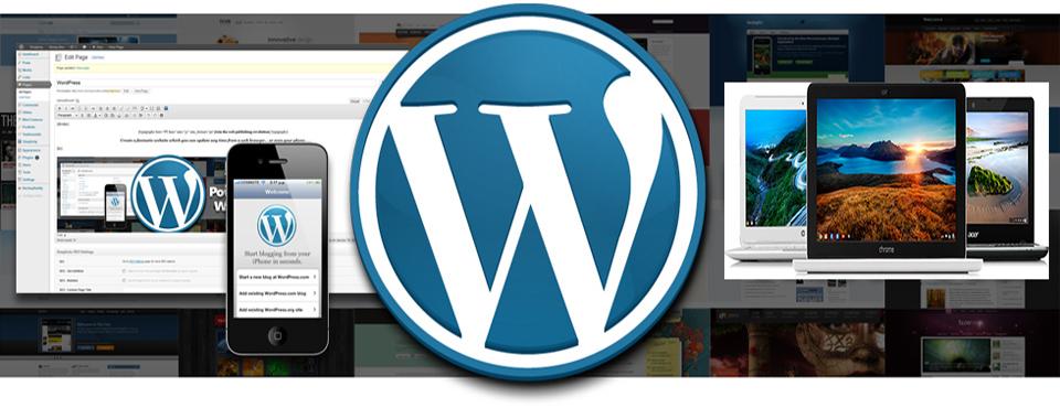 I will develop a WordPress theme from scratch