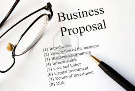 I Will Write Professional Business Proposal