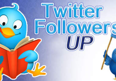 give you 250 Twitter Followers in 1 day