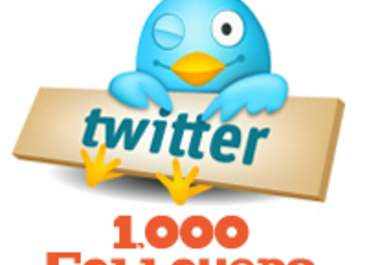 give you 1000+ twitter followers within 24 hours and without your password