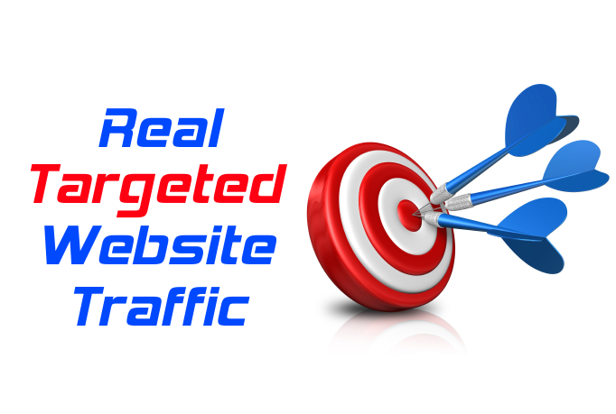 1000 Real Targeted Visits to Your Website