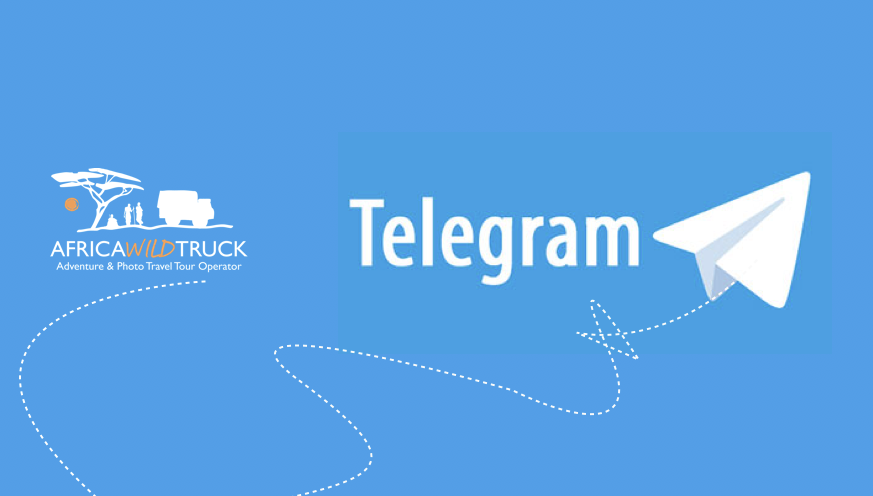 999+ Telegram Members or Post Views