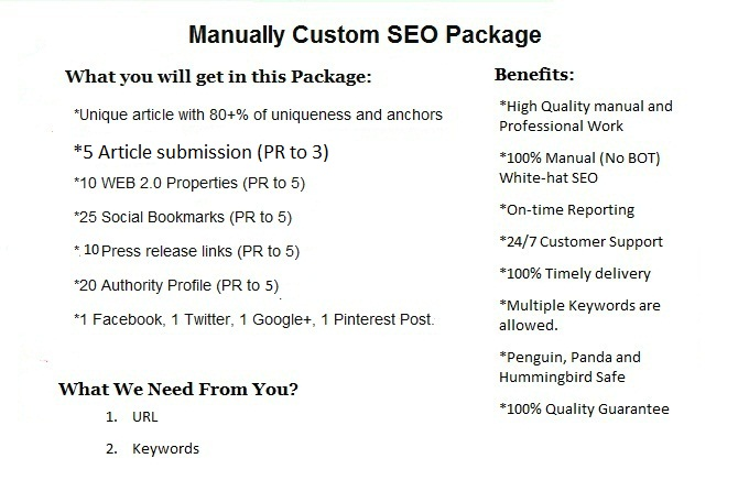 I Will Offer Manually Custom SEO Package
