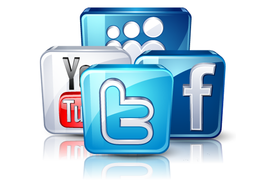 provide you with 20k Active Twitter followers with 1 year warranty